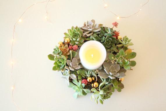 succulent christmas centrepiece