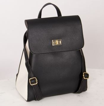 Adorne two tone backpack